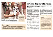 Advertiser News - It was a Dogday Afternoon